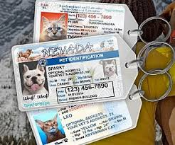 Pet Driver's Personalized Tag License