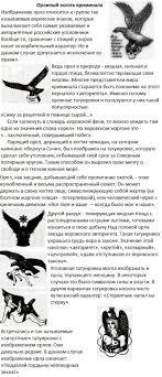 расшифровка значений тюремных тату 10 фото триникси