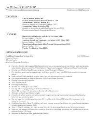 Aba Therapist Job Description For Resume