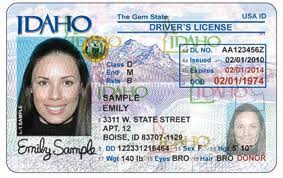 Down East Computer Idaho News System State License Driver's