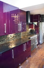 Coloured Small Kitchen Appliances Modern Purple Kitchen Design Inspiration With Glossy Purple