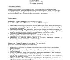 Awesome Resume Text Format And Size Photos Example Resume And