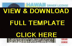 Drivers License Templates Cards Review Id Identification Free 100 Id Template Fake For With Novelty -