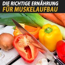 muskelaufbau richtige ernährung