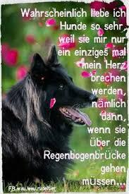 Hunde Zitate Gute Idee Tier Gegen Mensch Warheiten Pinterest