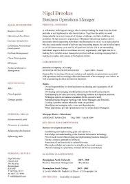 Business Operation Manager Resume