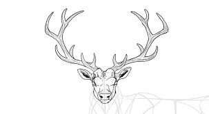 14 Autumn Drawing Deer For Free Download On Ayoqq Org