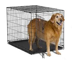 Midwest Icrate Size Breed Chart Best Dog Crates Everything You Need To Know Dogable