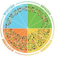 Seasonal Fruit And Veg Chart Uk The Great British Larder Countryside Online