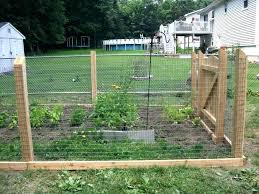2x4 welded wire fence. Liveable Welded Wire Fence Home Depot Q8978280 2x4 . F