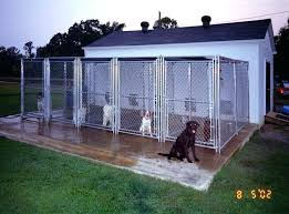 dog kennel ideas how to build an indoor outdoor designs plans simply contact solar boarding
