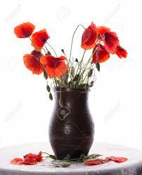 Bouquet De Coquelicotslll L