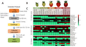 Targeted Bioactive Compound Extraction And Abundance From