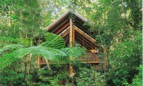 Virgin Holidaysu0027 South African TREEHOUSE Unveiled On Londonu0027s Treehouse Accommodation