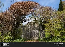Garden Gate Landscape And Design Old Wooden Garden Gate Image Photo Free Trial Bigstock
