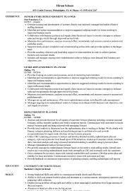 Download Replenishment Planner Resume Sample as Image file. 5 Problem  Solving Skills Resume Example Laredo Roses