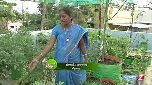 Rooftop Kitchen Garden Rooftop Vegetable Gardening Guide Poovali News7 Tamil Youtube