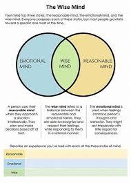 Venn Diagram Techniques Image Result For Dbt Mindfulness Exercises Venn Diagram