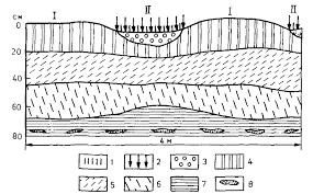 Тундровые почвы Реферат 5 Состав и основные свойства