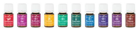 Afbeeldingsresultaat voor young living oils