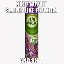 bathroom smells. now the bathroom smells like flowers...and feces
