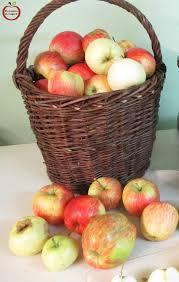 ment faire un bon jus de pomme variétés pour jus de pomme pomme pour
