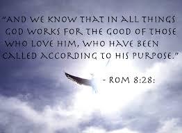 Niv Bible Quotes
