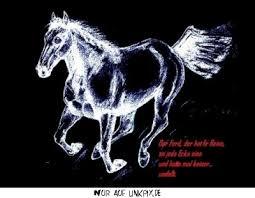 Hier Ist Das Gb Bild Aus Pferde Und Einhorn Mit Dem Namen Pferd