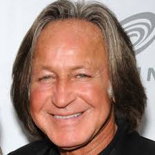 Image result for Mohamed Hadid