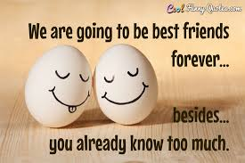 The Best Quotes About Friendship Beauteous Friend Quotes Cool Funny Quotes