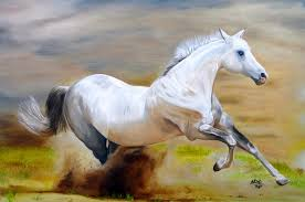 wild horse oil paintings photo 7