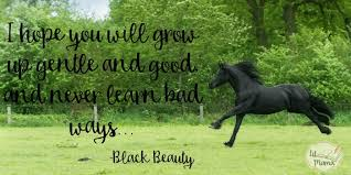 Black Beauty Quote Best of Black Beauty Activities For Learning Lit Mama