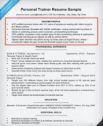 Gallery Of Good Resume Profile Examples 2016 Profile Examples For