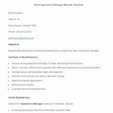 Sample Resume Pdf Best Operations Manager Resume Sample Pdf Unique Bank Sample Resume Bank
