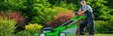 5 Benefits Of Professional Lawn Care Services