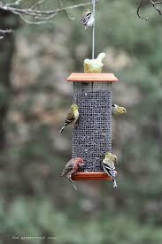 sunflower tower bird feeder