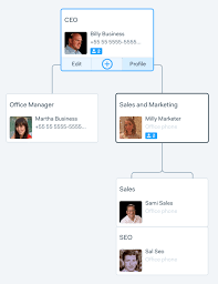 Chart Business How To Make A Business Organizational Chart In 3 Steps