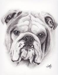 dogs drawings in pencil for kids.  For Easy Dog Drawings In Pencil For Kids U0026 Dog Portrait Drawing Intended Dogs L