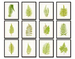 on gallery wall art prints with vintage ferns print set no 3 gallery wall art bellebotanica
