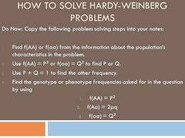 word problem into equation how to solve linear equation word word problem equations 6th grade