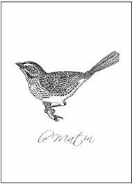 春の鳥 アート ポスター 飾るだけでお洒落部屋にアンティーク
