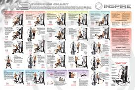 Weider Pro 4850 Exercise Chart Weider 6900 Exercises Online Charts Collection