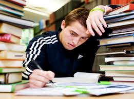 term paper service research papers  help in writing term paper