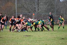 oregon state women s rugby home face