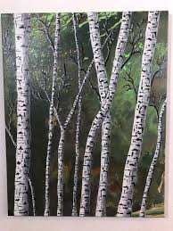 embellish any acrylic pour with easy painted birch trees painting