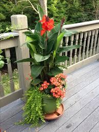 Full Sun Container Garden Ideas Ideas  Home InspirationsContainer Garden Ideas Full Sun