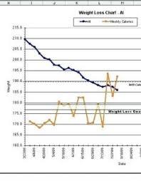 Weight Loss Tracker Chart Excel Www Homeschoolingforfree Org