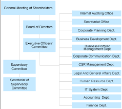Corporate Organizational Chart With Board Of Directors Organization Directors And Auditors Company Cosmo Energy