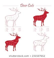 Meat Cuts Diagram Images Stock Photos Vectors Shutterstock