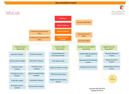 department organizational chart organizational structure department sections